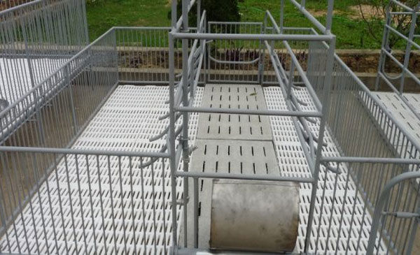 Hướng dẫn xây dựng chuồng trại nuôi lợn nái